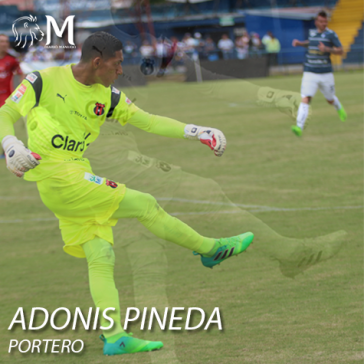 ADONIS-PINEDA
